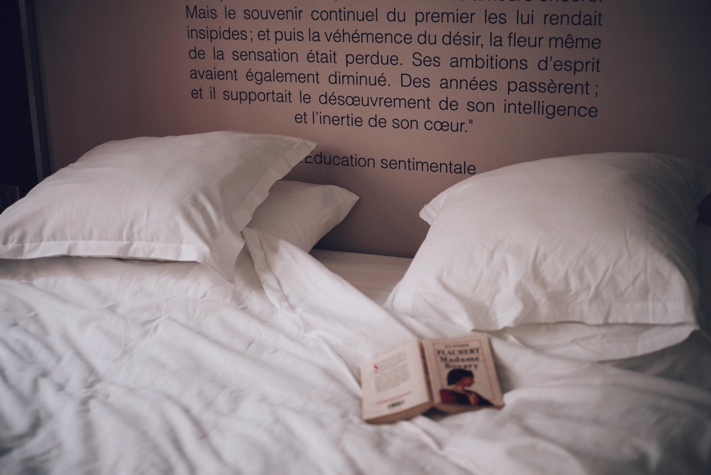 Hotel-Flaubert-Chambre